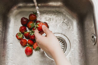 Hand washing strawberries in a sink - NMS00341