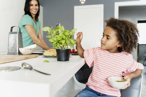 Girl cooking with mother in kitchen plucking basil leaves - ERRF01696