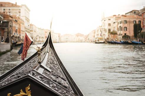 Pic of venecia/ITALY/VENECIA - LJF00525