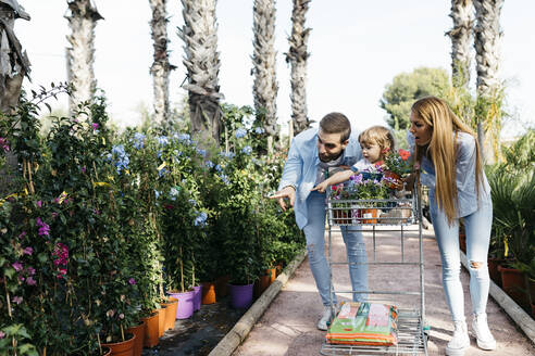 Spain, Tarragona. A happy family buying flowers in a garden center with the daughter on top of the shopping cart - JRFF03466