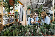 Mother, father and daughter in the cactus area inside a garden center - JRFF03490