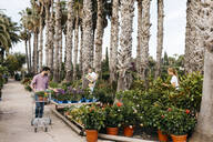 Customer with shopping cart walking in a garden center - JRFF03523