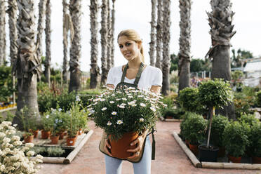 Portrait of a smiling female worker in a garden center holding a daisy plant - JRFF03532