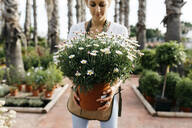 Female worker in a garden center holding a daisy plant - JRFF03535