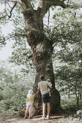Mother with two daughters admiring big tree in a forest - DWF00458