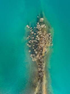Aerial view of growing vegetation in beautiful lake Plastira at Karditsa, Greece - AAEF00623