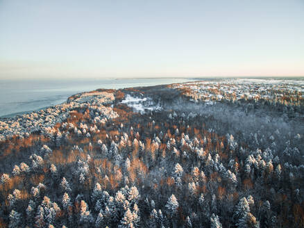 Aerial view of the snowy forest on the coast of Estonia during winter. - AAEF00890