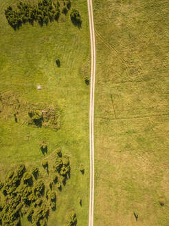 Aerial view of a en empty straight road in countryside of Estonia. - AAEF01007