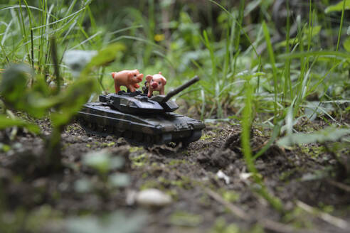 Close-up of toy animals with armored tank on land against plants - AXF00831
