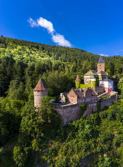 Zwingenberg Castle amidst trees against blue sky in town, Odenwald, Germany - AM07252