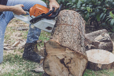 Man jointing a tree trunk with a motor saw - MMAF01092