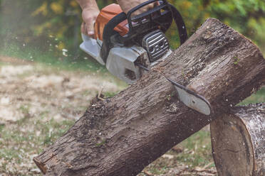 Man jointing a tree trunk with a motor saw - MMAF01095