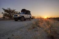 Off-road vehicle driving on a dirt road at sunrise, Makgadikgadi Pans, Botswana - VEGF00492