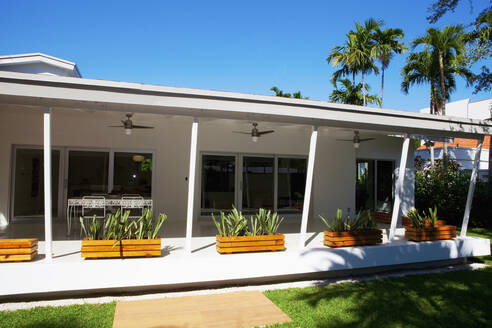 Plants and awning of patio of modern house - BLEF13942