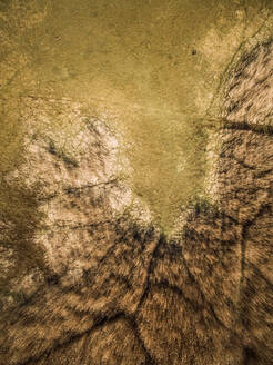 Abstract aerial view of wetland landscape in Island Vormsi in Estonia - AAEF02035