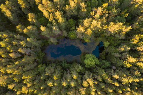 Aerial view of a small lake hidden in the middle of the forest in Estonia - AAEF02050