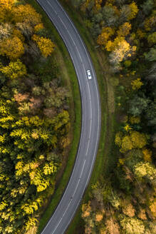 Aerial view of a car driving across the colorful nordic forest at fall in Estonia - AAEF02071