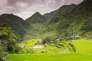 Rice Terraces, Bangaan, UNESCO World Heritage Site, Luzon, Philippines, Southeast Asia, Asia - RHPLF00258