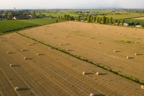 Drone shot of cultivated land at Friuli-venezia Giulia, Italy - MAUF02744