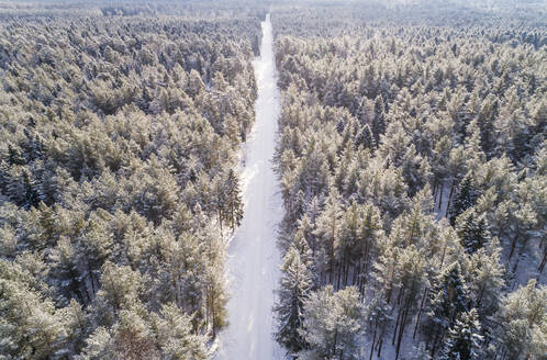 Aerial view of a road covered with snow in the forest of Naage in Estonia - AAEF02508