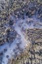 Aerial view of the snowy forest in Naage in Estonia - AAEF02514