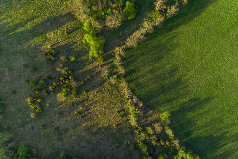 Aerial view of forest and field on Forby on Vormsi island, Estonia - AAEF02556