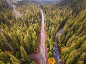 Aerial view of a road crossing the forest in Oregon, USA - AAEF03041