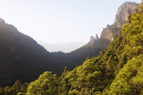 Caldera de Taburiente National Park, UNESCO Biosphere Site, La Palma, Canary Islands, Spain, Atlantic, Europe - RHPLF00500