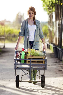 Beautiful woman transporting plants with a wheelbarrow in the greenhouse - JSRF00536