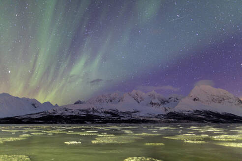 Northern Lights on the icy sea of Svensby, Lyngen Alps, Troms, Lapland, Norway, Scandinavia, Europe - RHPLF00988