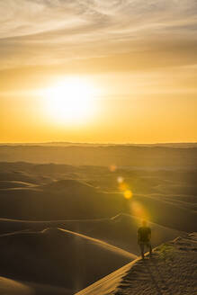 Man enjoying the sunset in the giant sand dunes of the Sahara Desert, Timimoun, western Algeria, North Africa, Africa - RHPLF01655