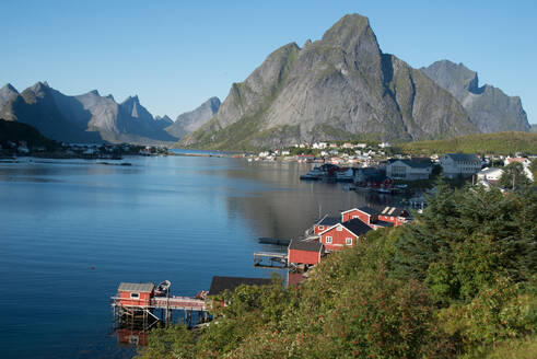 View over Reine Harbour, Lofoten Islands, Nordland, Norway, Scandinavia, Europe - RHPLF01743
