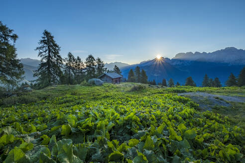 Brenta mountain range at sunrise, Rendena Valley, Trentino, Italy, Europe - RHPLF01899