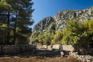 Ruins of Olympos, Antalya Province, Lycia, Anatolia, Mediterranean Sea, Turkey, Asia Minor, Eurasia - RHPLF03493