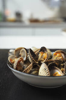 Close-up of clams served in plate at home - MAUF02772