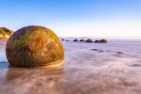 The Moeraki Boulders are unusually large and spherical boulders lying along a stretch of Koekohe Beach on the wave-cut Otago coast of New Zealand. - SMAF01373
