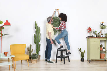 Couple hanging plant on the wall at home - RTBF01340