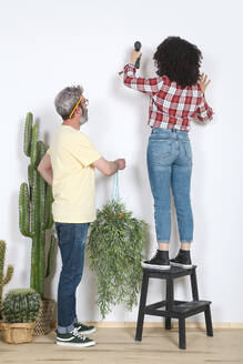 Couple hanging plant on the wall at home - RTBF01343