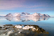 Snowy peaks reflected in the clear sea, Grundstad, Lofoten Islands, Nordland, Norway, Europe - RHPLF05004