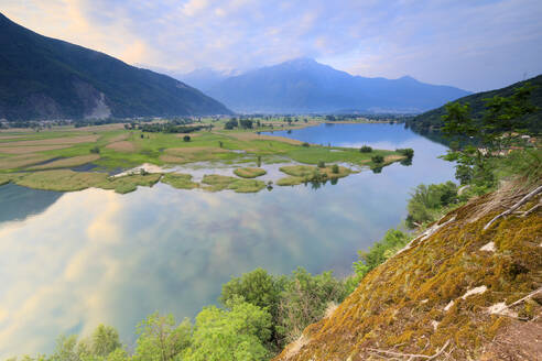 Sunrise on the Natural Reserve of Pian di Spagna, Dascio, province of Como, Chiavenna Valley, Lower Valtellina, Lombardy, Italy, Europe - RHPLF05157