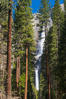 Yosemite Falls, Yosemite National Park, UNESCO World Heritage Site, California, United States of America, North America - RHPLF06174
