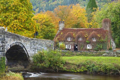 Llanrwst Bridge (Pont Fawr), Clwyd, Snowdonia, North Wales, United Kingdom, Europe - RHPLF06712