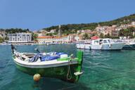 Fishing boats at the port, Hvar, Hvar Island, Dalmatia, Croatia, Europe - RHPLF06932