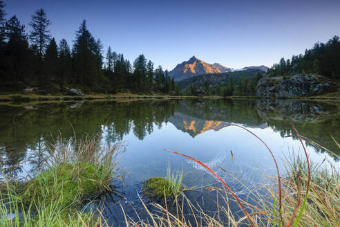 Rocky peak of Sasso Moro reflected in Lake Mufule at dawn, Malenco Valley, Province of Sondrio, Valtellina, Lombardy, Italy, Europe - RHPLF07497