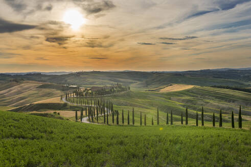 Baccoleno farmhouse, Val d'Orcia (Orcia Valley), UNESCO World Heritage Site, Tuscany, Italy, Europe - RHPLF07587