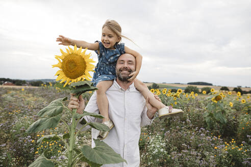 Happy man carrying daughter in a sunflower field - KMKF01069