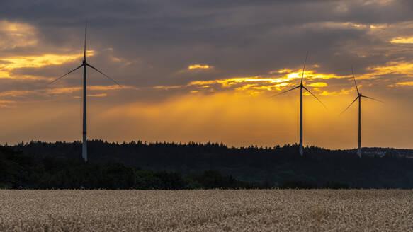 Wind turbines at sunset - STSF02210