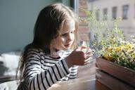 Portrait of a girl examining flowers - EYAF00434