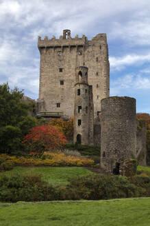 Bunratty Castle, County Cork, Munster, Republic of Ireland, Europe - RHPLF08347