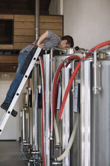 Young entrepreneur working at tank at a brewery - ALBF01084